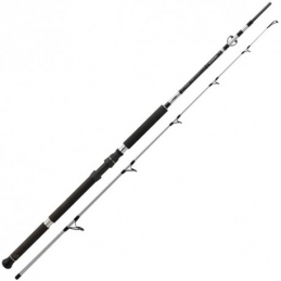CAÑA DAIWA POWERMESH CF (2.90 M)